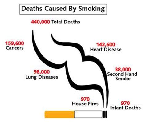 Essay effects of smoking cigarettes
